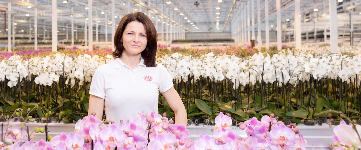 Dorota Goździcka